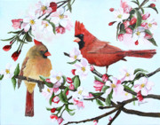 Bird Prints Prints - Cardinals and Apple Blossoms Print by Johanna Lerwick