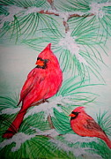 Cardinals Drawings - Cardinals by Christina A Pacillo