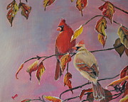 Quite Originals - Cardinals In Falls by Preethi Mathi