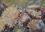 Golden Brown Pastels Prints - Cardoon  Print by Debbie Harding