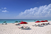 Turks And Caicos Islands Photos - Caribbean Blue by Stephen Anderson
