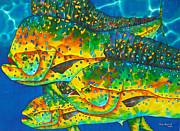 Palegic Fish Tapestries - Textiles Prints - Caribbean Gold Print by Daniel Jean-Baptiste
