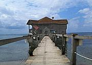 Pier Mixed Media - Caribbean Pier by Paul Barlo