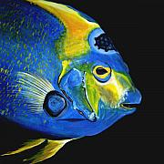 Tropical Fish Paintings - Caribbean Queen by J Vincent Scarpace
