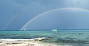 Anna Crowder - Caribbean Rainbow