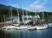 Buildings By The Sea Framed Prints - Carlingford Marina, Carlingford, County Framed Print by The Irish Image Collection