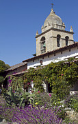 Historic Garden Posters - Carmel Mission and garden Poster by Elvira Butler