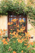 Orange Flowers Prints - Carmel Mission Window Print by Carol Groenen