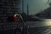 Bravery Prints - Carnation Left At The Vietnam Veterans Print by Medford Taylor