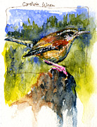 Wren Paintings - Carolina Wren by John D Benson