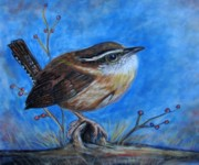 South Pastels Prints - Carolina Wren Print by Patricia L Davidson