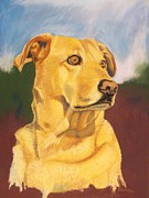 Retriever Pastels Posters - Caroline Poster by Robert Decker