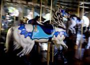 Linda Knorr Shafer - Carousel Blue