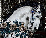 Amusement Ride Prints - Carousel Horse - 8 Print by Paul Ward
