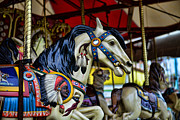Amusement Ride Framed Prints - Carousel Horse 6 Framed Print by Paul Ward
