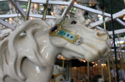 Band Organ Framed Prints - Carousel Horse Framed Print by Anne Babineau