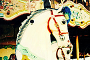 Eye Shutter To Think - Carousel Horse