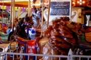 Band Organ Framed Prints - Carousel Lion Framed Print by Kathy Flugrath Hicks