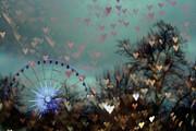 Georgia Fowler - Carousel of Hearts