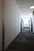 Florescent Lighting Prints - Carpeted Hall with Office Cubicles Print by Jetta Productions, Inc