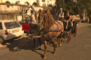 Rural Scenes Digital Art - Carriage ride in rural Portugal by Sven Brogren