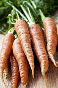 Garden Grown Metal Prints - Carrots Metal Print by Elena Elisseeva