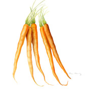 Square Prints Prints - Carrots Print by Fran Henig