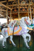 White Horse Photographs Greeting Cards Prints - Carrousel 30 Print by Joyce StJames