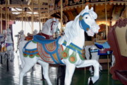 White Horse  Framed Prints - Carrousel 31 Print by Joyce StJames