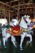 White Horse Photographs Greeting Cards Prints - Carrousel 33 Print by Joyce StJames