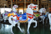 White Horse Photographs Greeting Cards Prints - Carrousel 35 Print by Joyce StJames