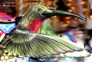 Diane Merkle Prints - Carrousel Hummingbird Print by Diane Merkle