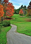 Fall Grass Posters - Cart Path Poster by Robert Harmon