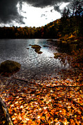Fir Trees Prints - Cary Lake After the Storm Print by David Patterson