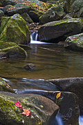 Saluda Posters - Cascade At Jones Gap Poster by Rob Travis