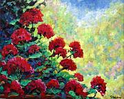 Red Geraniums Painting Posters - Cascade of Geraniums Poster by Richard T Pranke