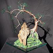 Wire Tree Sculptures - Cascade  on  Glass - Wire Tree Sculpture by Sal Villano