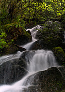 Waterfall Prints - Cascading Streams Print by Mike Reid