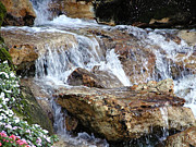 Barbara Middleton Prints - Cascading Water Print by Barbara Middleton