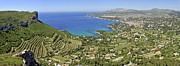 Sami Sarkis - Cassis village with vineyards on Mediterranean coast