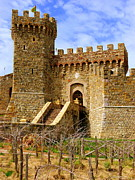 Sangiovese Framed Prints - Castello di Amorosa Framed Print by Jeff Lowe