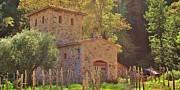 Castillo De Amoroso Farmhouse Napa Valley Print by George Sylvia