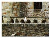 Joan  Minchak - Castle Bird