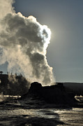 Yellowstone Park Prints - Castle Geyser Morning Print by Bruce Gourley