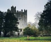 Architectural Heritage Framed Prints - Castle Matrix, Co Limerick, Ireland Framed Print by The Irish Image Collection