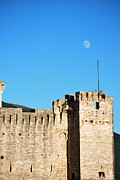 Amee Stadler - Castle Moon