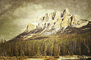 Winter Landscapes Framed Prints - Castle Mountain Framed Print by Andrea Hazel Ihlefeld