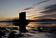 Castle Stalker Print by Pat Speirs