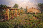 Grape Vineyard Originals - Castoro Winery by R W Goetting