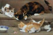 Pets Art - Cat and kittens chasing a mouse   by Rosa Jameson